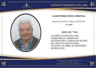 Agostinho Costa Freitas