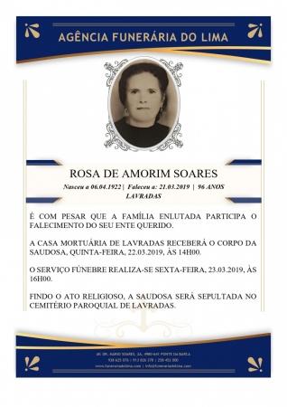 Rosa Amorim Dias