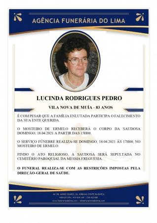 Lucinda Rodrigues Pedro