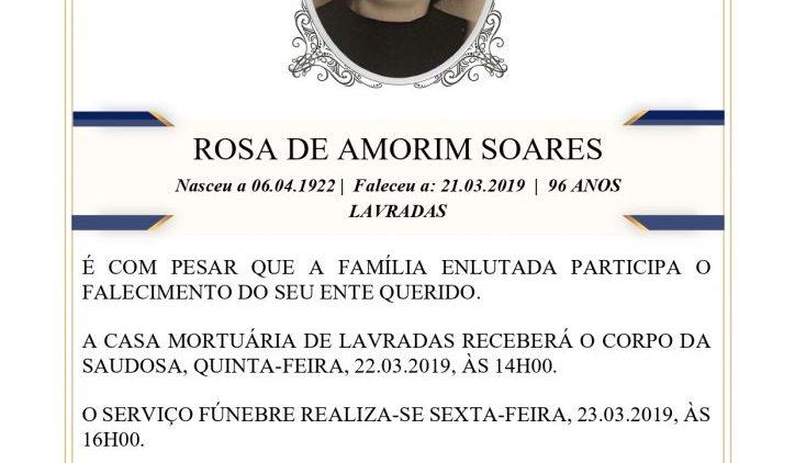20190321-Rosa-Amorim-Dias-724x1024.jpg